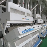 Rice Polishing and Grinding in Rice Processing Line